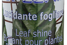 BRILLANT PLANTE 750ML